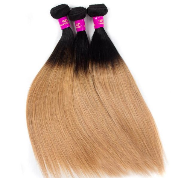 brazilian_ombre_hair_1b27_ombre_blonde_straight_human_hair_2