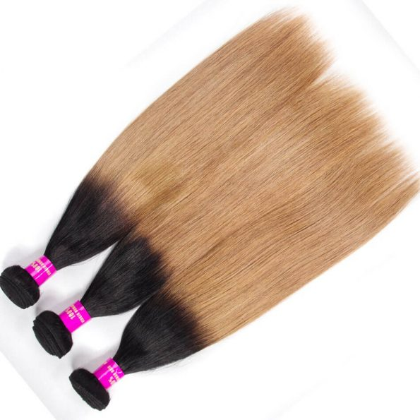 brazilian_ombre_hair_1b27_ombre_blonde_straight_human_hair_3