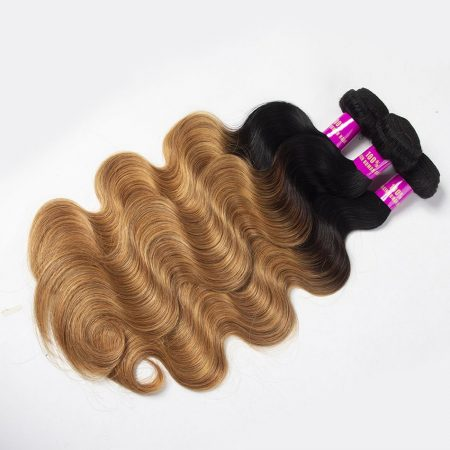 1B/27 Ombre Body Wave Human Hair Bundles Brazilian Hair